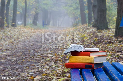 istock Stack of hardback book lying on a bench at sunset 514577214