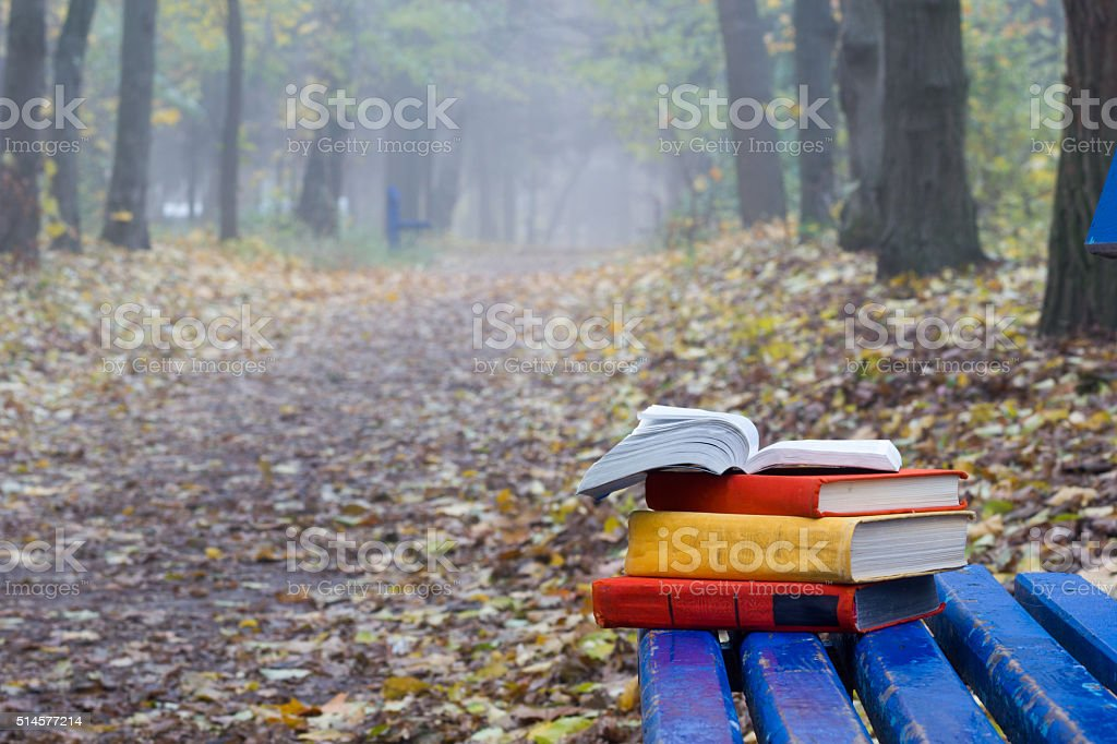 Stack of hardback book lying on a bench at sunset stock photo