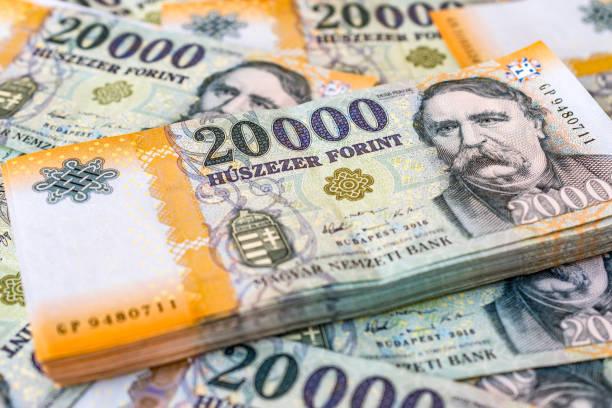 一疊匈牙利貨幣 (福林) 鋪設20000福林紙幣 - 匈牙利文化 個照片及圖片檔
