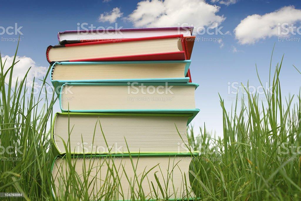 Bücher auf dem Rasen – Foto