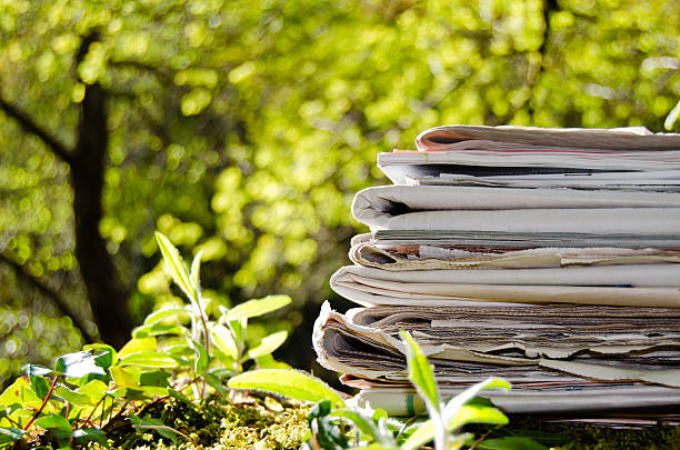 Stack of old newspapers in the middle of the forest. stock photo