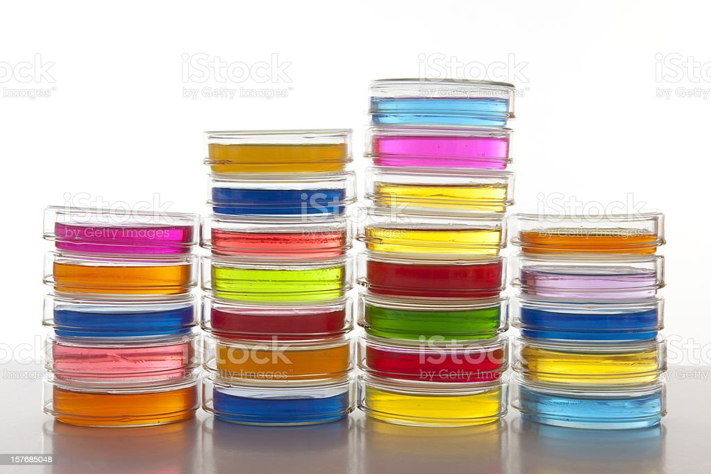 Stack of petri dishes royalty-free stock photo