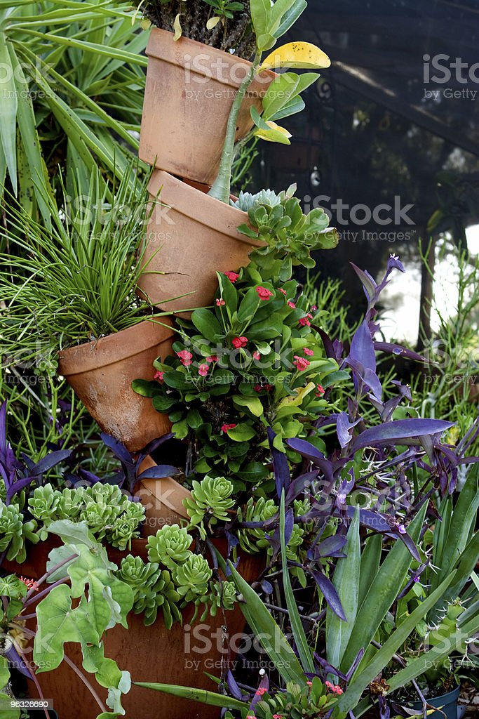 Stack of Potted Plants royalty-free stock photo