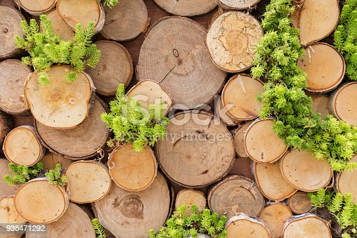 istock stack of timber 935471292