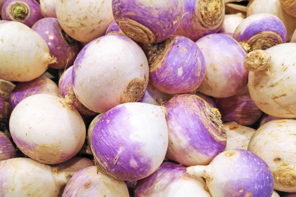 Stack of turnips Close-up on a stack of turnips on a market stall. brassica rapa stock pictures, royalty-free photos & images