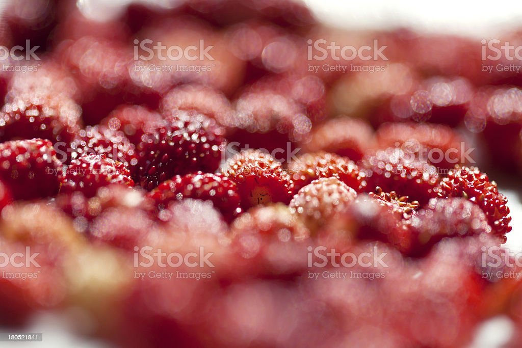 Stack of wild strawberries royalty-free stock photo