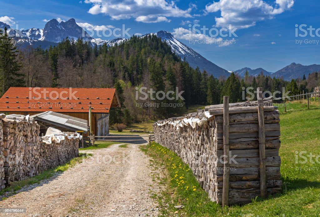 Stack of wood on a mountain farm royalty-free stock photo
