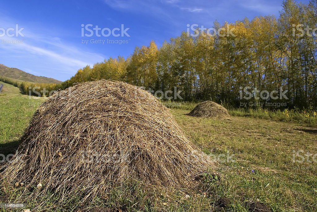 stack royalty-free stock photo