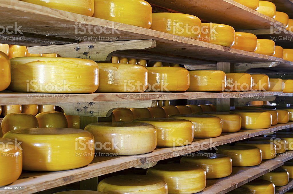 Stacked cheese in storage room stock photo