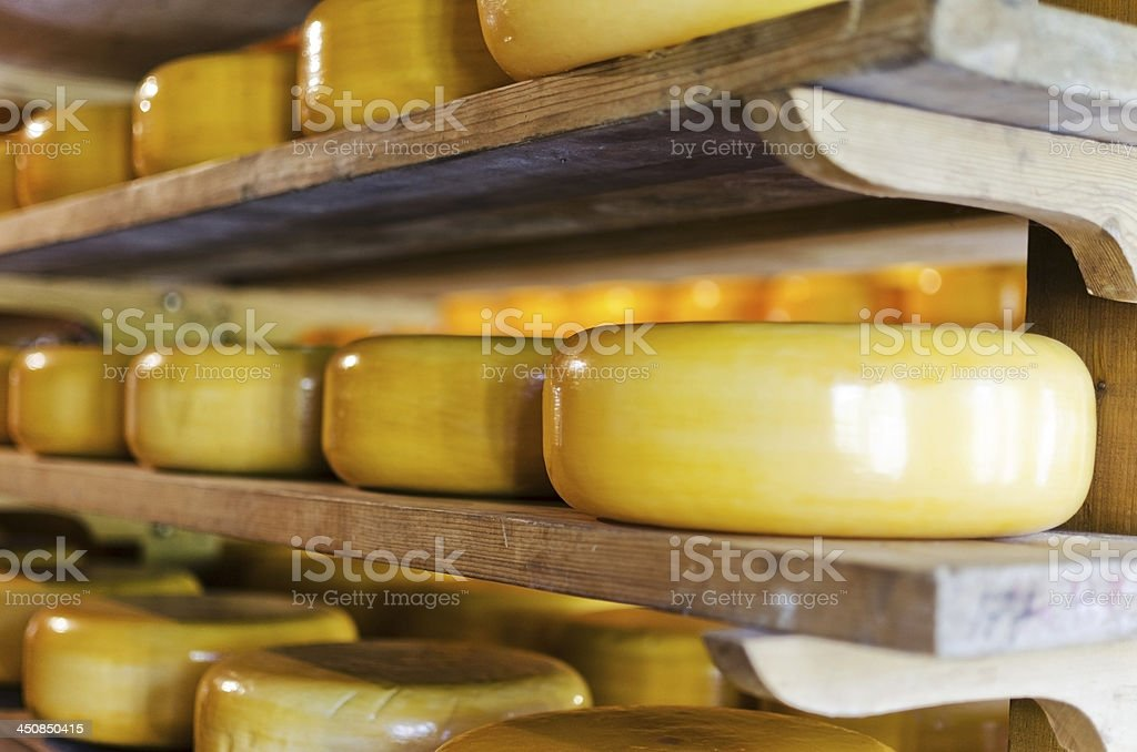 stacked dutch cheese stock photo