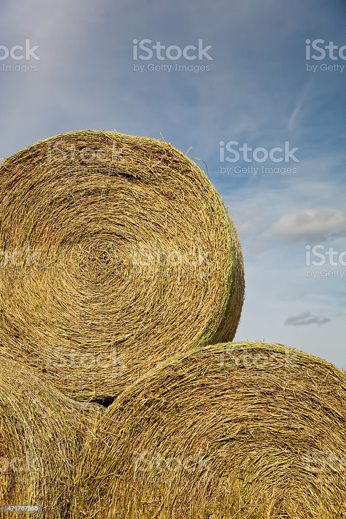 Stacked Hay Bales royalty-free stock photo