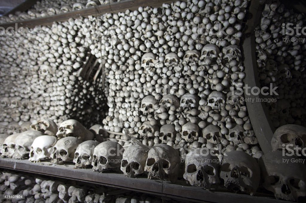 Gestapelte Menschlicher Knochen – Foto