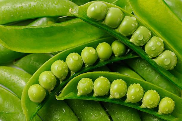 empilhados aberto fresco verde ervilhas com gotículas de água - ervilha imagens e fotografias de stock