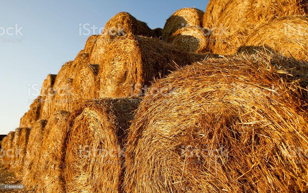 Gestapelte Stroh Hay Bails – Foto
