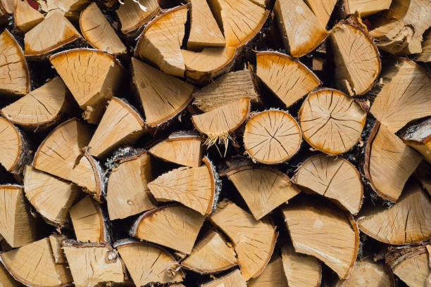 stacked wood logs stock photo