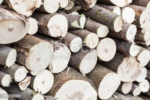 istock Stacked wood pine timber,flat lay, background texture 1072132342