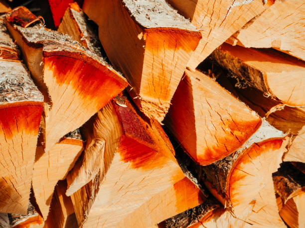 Stacked wooden logs stock photo