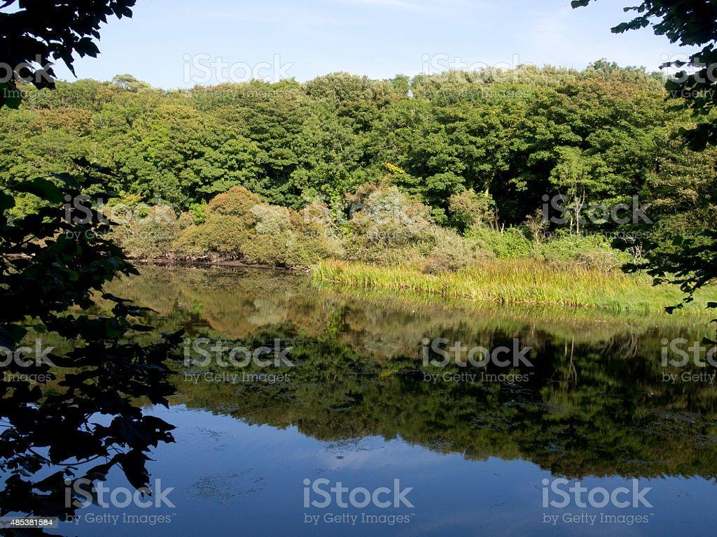 Stackpole, Bosherton, West Wales stock photo