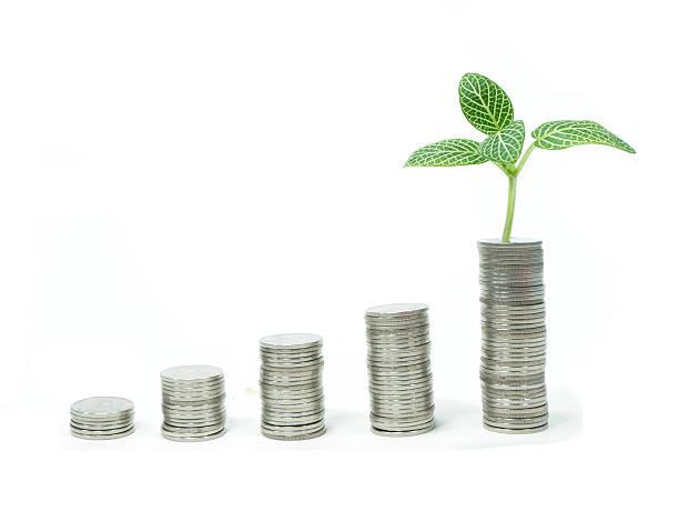 Stapel von Münzen und ein Junge Pflanze – Foto