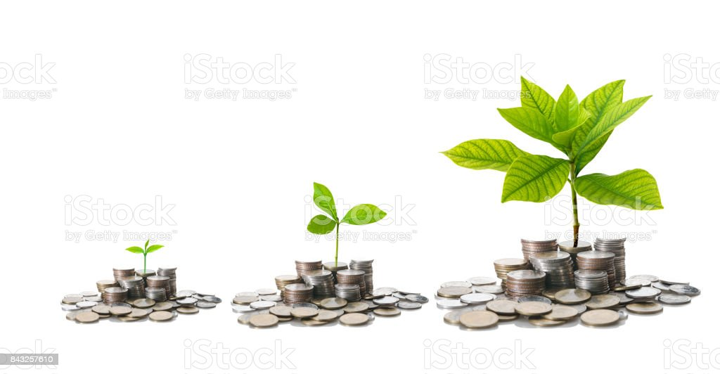 stacks of mix coins with difference size of seed on white background, Business Investment concept stock photo