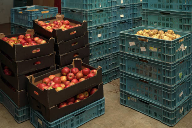 Stacks of plastic box containers with apples, potatoes and other crops in fruit and vegetables warehouse stock photo