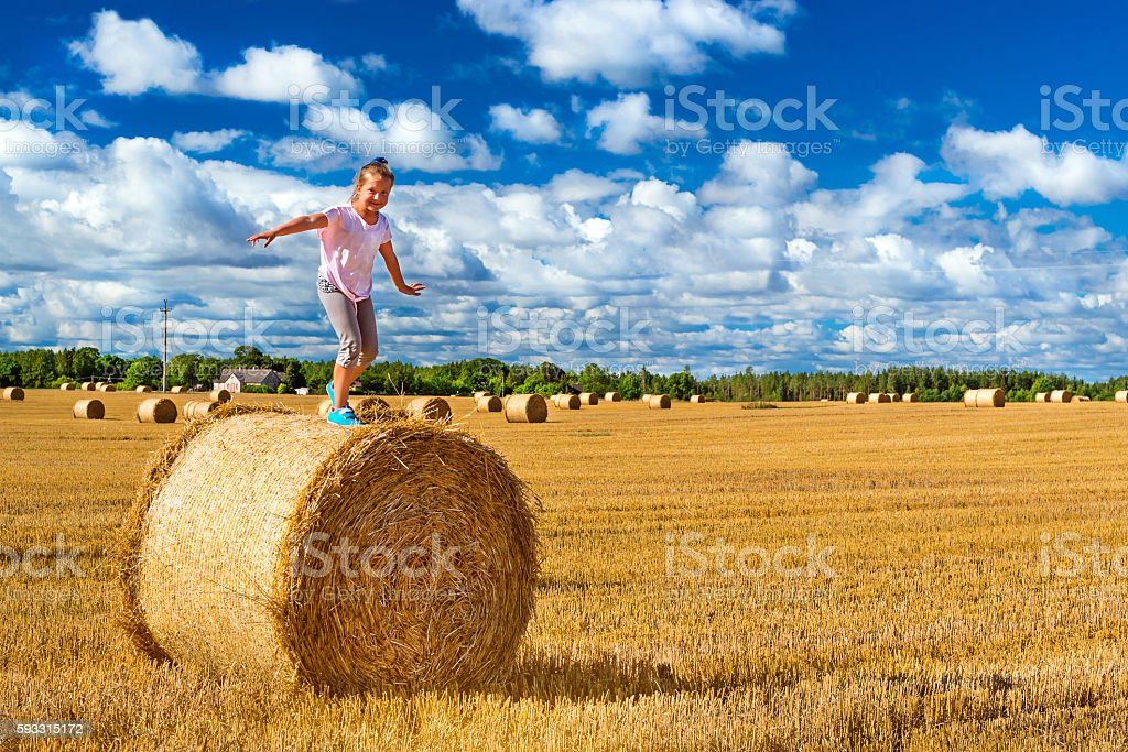 Stacks of straw - bales of hay, rolled into stacks stock photo