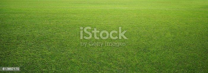 istock stadium grass 612852170