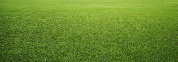 estádio grama - gramado terra cultivada - fotografias e filmes do acervo