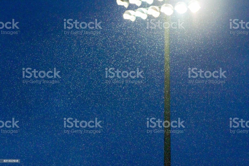 Stadium lights shining through the rain stock photo