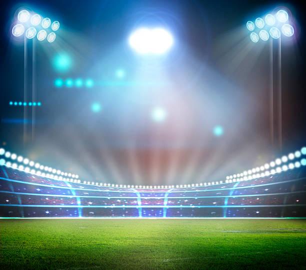 stadium - cage animal nuit photos et images de collection