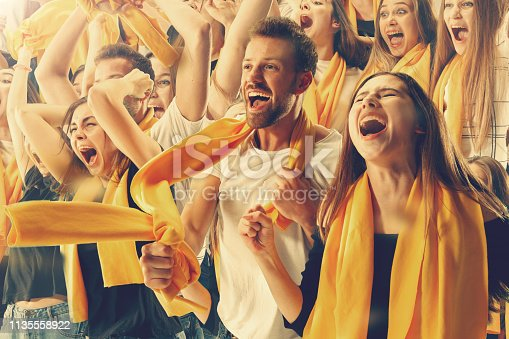 Group of happy fans are cheering for their team victory. Collage made of six models.