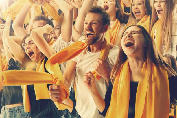 stadium soccer fans emotions portrait - adeptos imagens e fotografias de stock