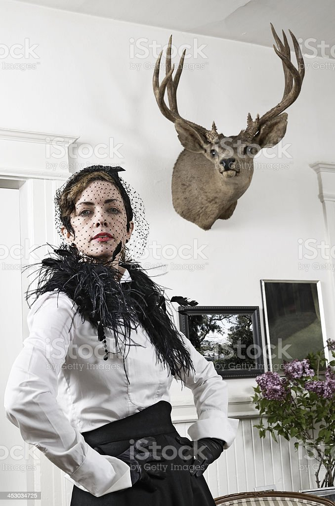 Stag's head royalty-free stock photo