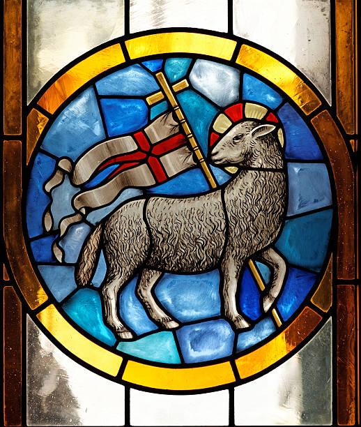 Image result for agnus dei