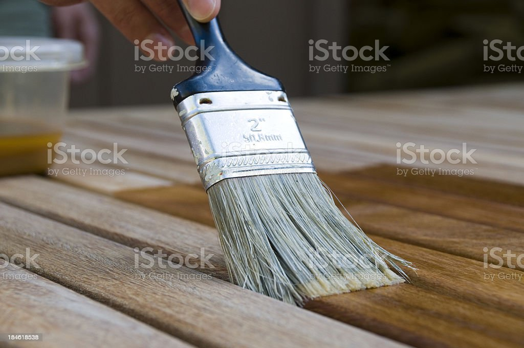 Staining Wood with Paintbrush stock photo
