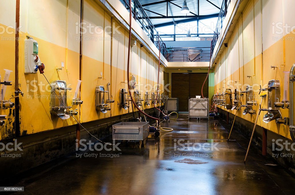 Stainless steel fermentation vessels in Bulgarian winery stock photo