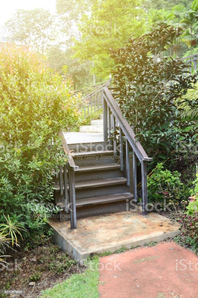 Photo libre de droit de Escalier Dans Le Jardin De La Nature Du Pays Chiang  Mai banque d\'images et plus d\'images libres de droit de {top keyword}