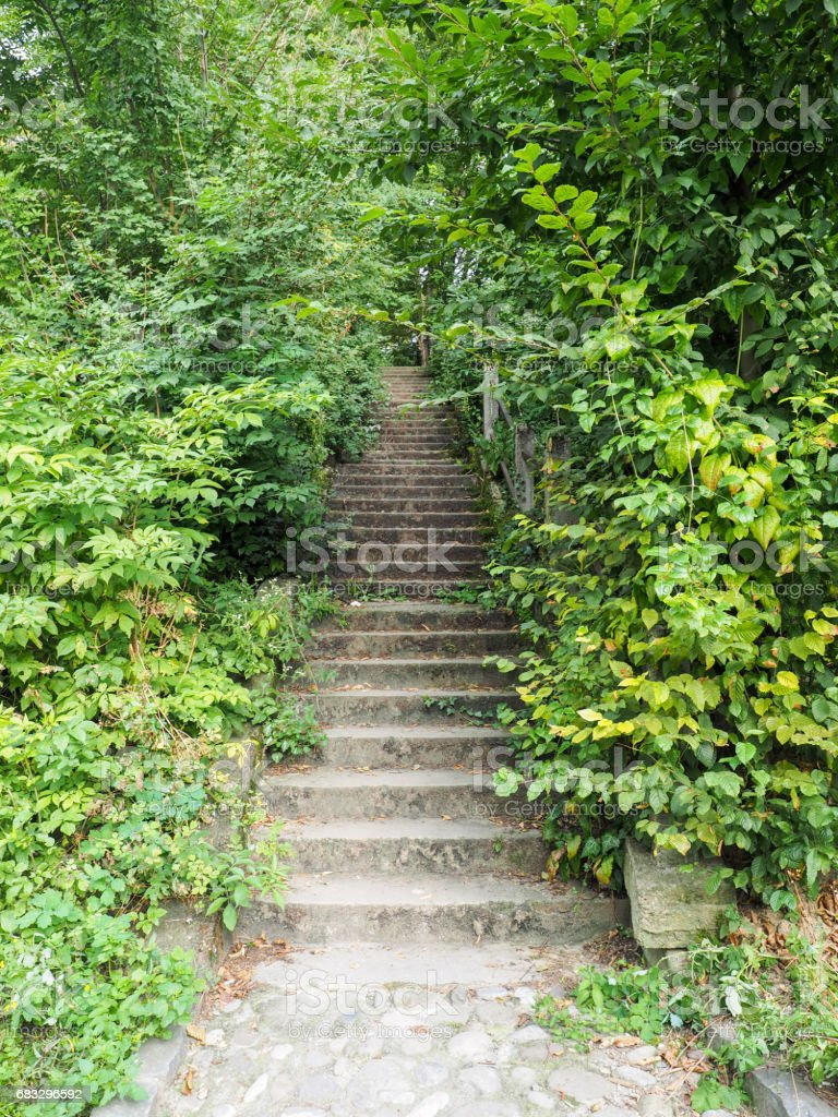 A stair in Sighisoara citadel, surrounded by lush vegetation stock photo