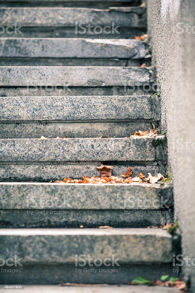 stair with leaves stock photo