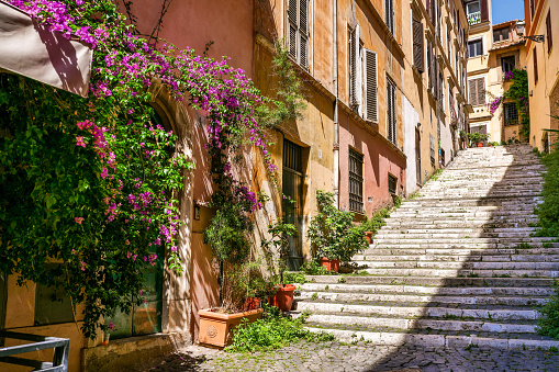A staircase with a bougainvillea in a very picturesque and hidden alley in the Rione Monti (Monti district), in the heart of the historic center of Rome.The Monti district is a popular and multi-ethnic quarter much loved by the younger generations and tourists for the presence of trendy pubs, shops and restaurants, where you can find the true soul of the Eternal City. The quarter, located between the Esquiline Hill and the Roman Forum, is also rich in numerous churches and archaeological remains from the Roman era. Image in high definition format.