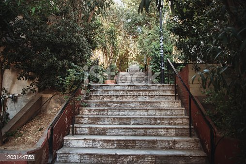 A staircase surrounded of plants in Kolonaki, Athens, Greece