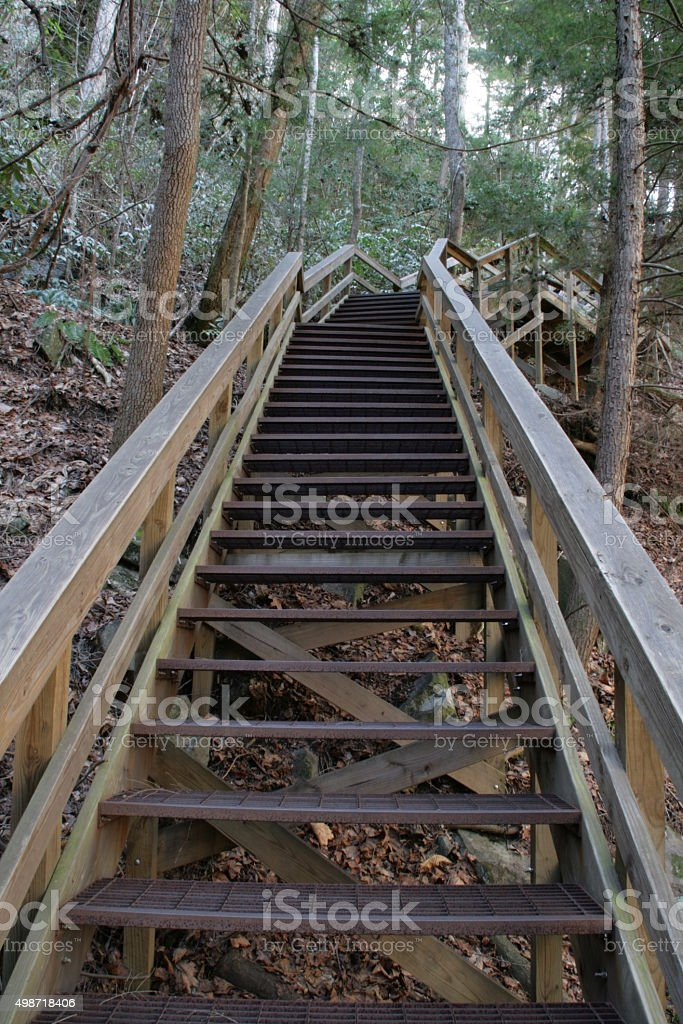 Stairs at Tallulah Gorge State Park in North Georgia stock photo