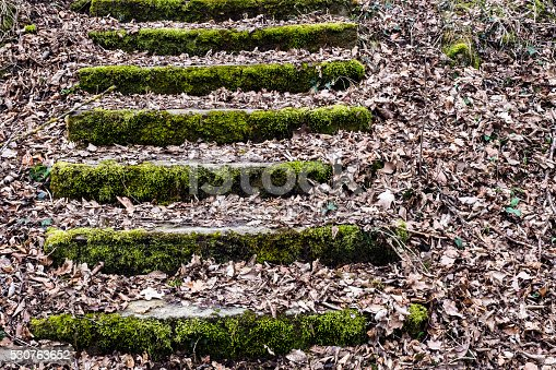 Ancient steps, almost no one uses them anymore. Soon they will be gone. Photograph taken near Rechtenstein, Baden-Württemberg, Germany.