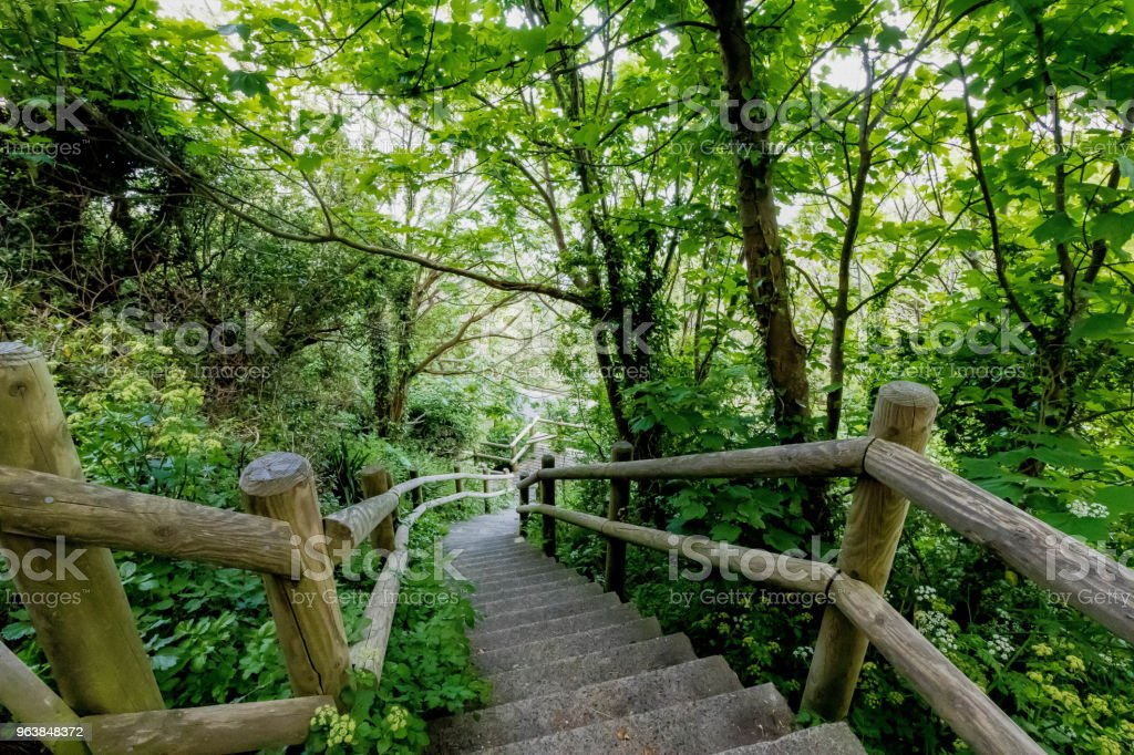 Stairs in a Park - Royalty-free Horizontal Stock Photo
