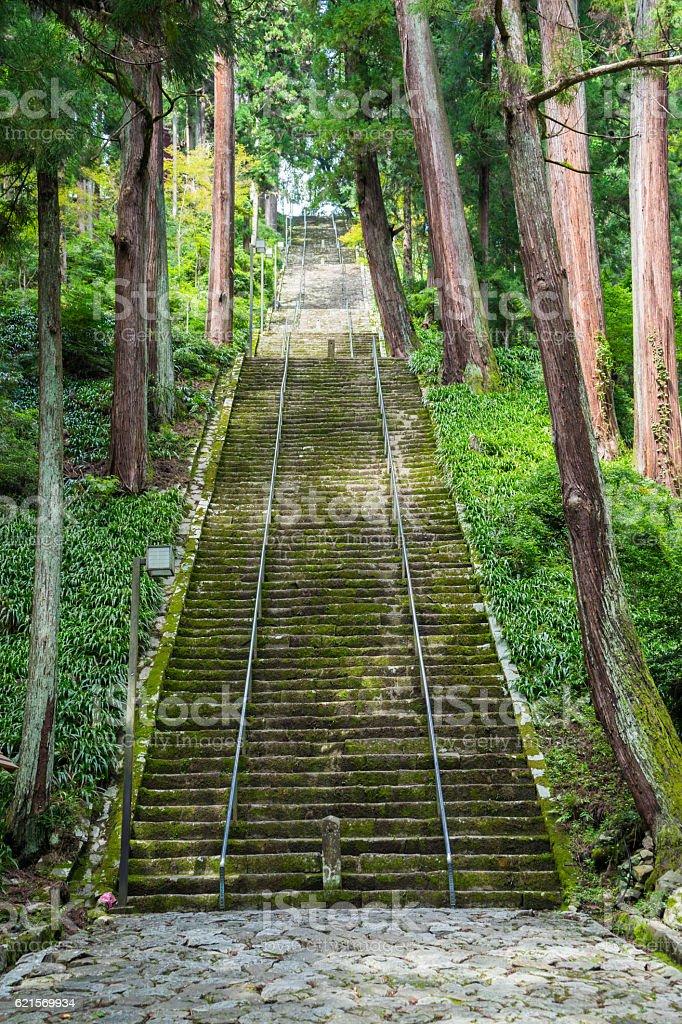 Les escaliers  photo libre de droits