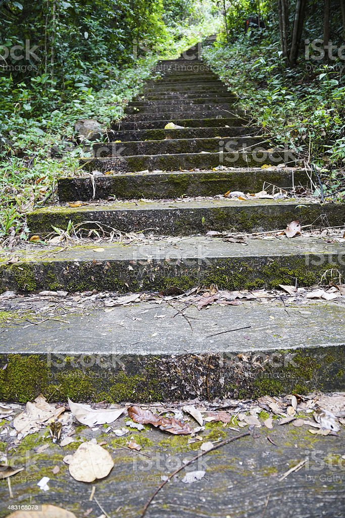 Stairs to hill stock photo