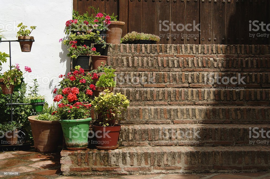 Stairs with flowers royalty-free stock photo