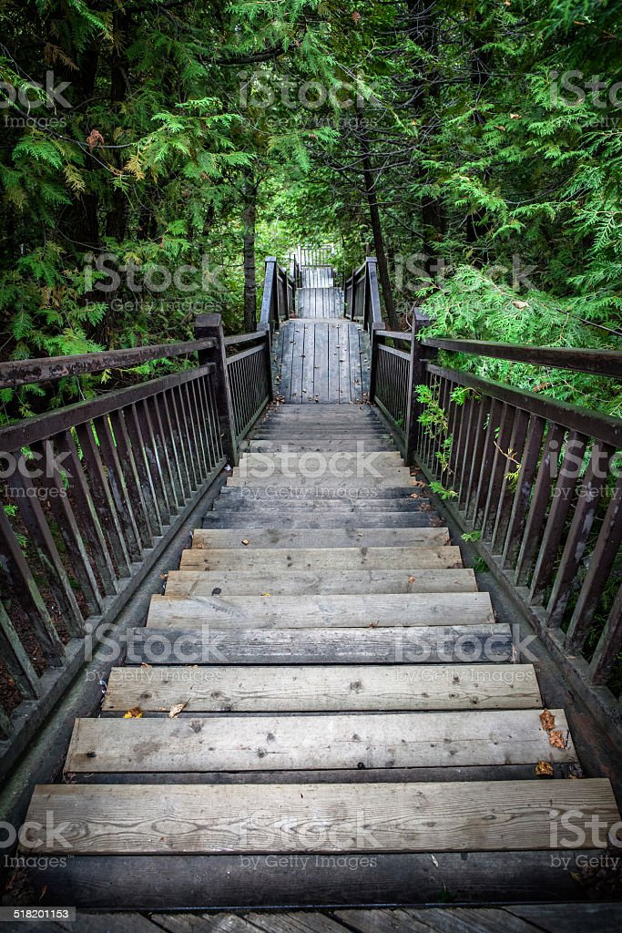 Stairway Into A Deep Green Abyss stock photo
