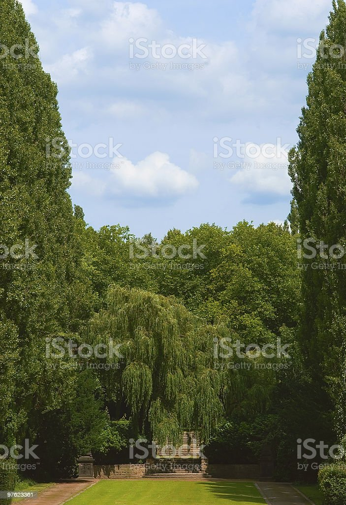 Stairway to Heaven - Huge trees, clouds and stairs royalty-free stock photo