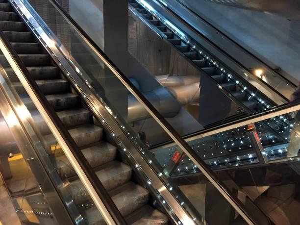 Stairways, modern jungle